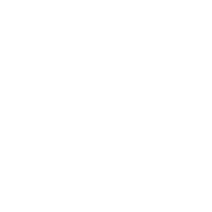 logo_servizi